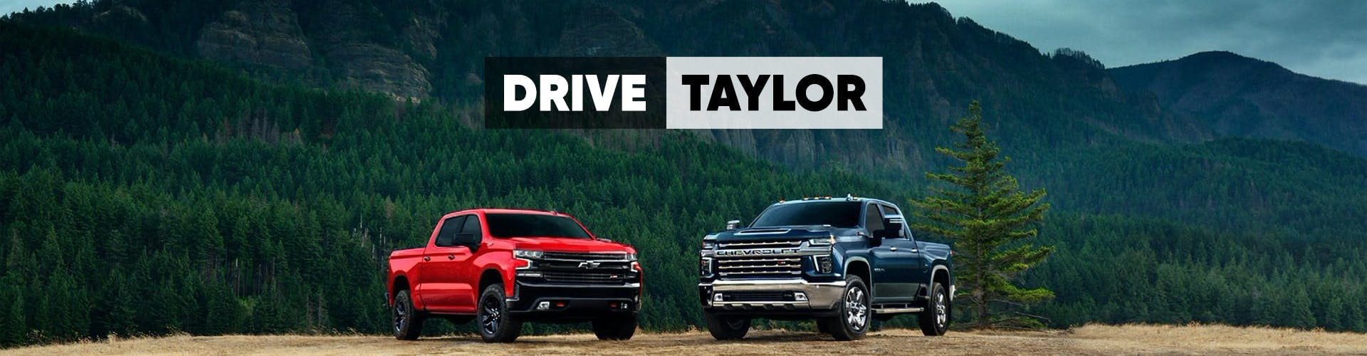 Offer - Drive Taylor